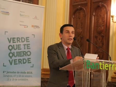 José Ignacio Domingo