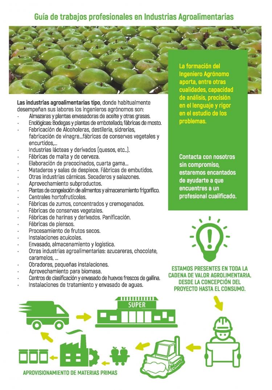 Ingenieros Agrónomos e industria agroalimentaria. Guía de trabajos profesionales. COIAANPV
